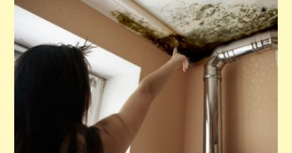 5 Ways to Prevent Mold Growth